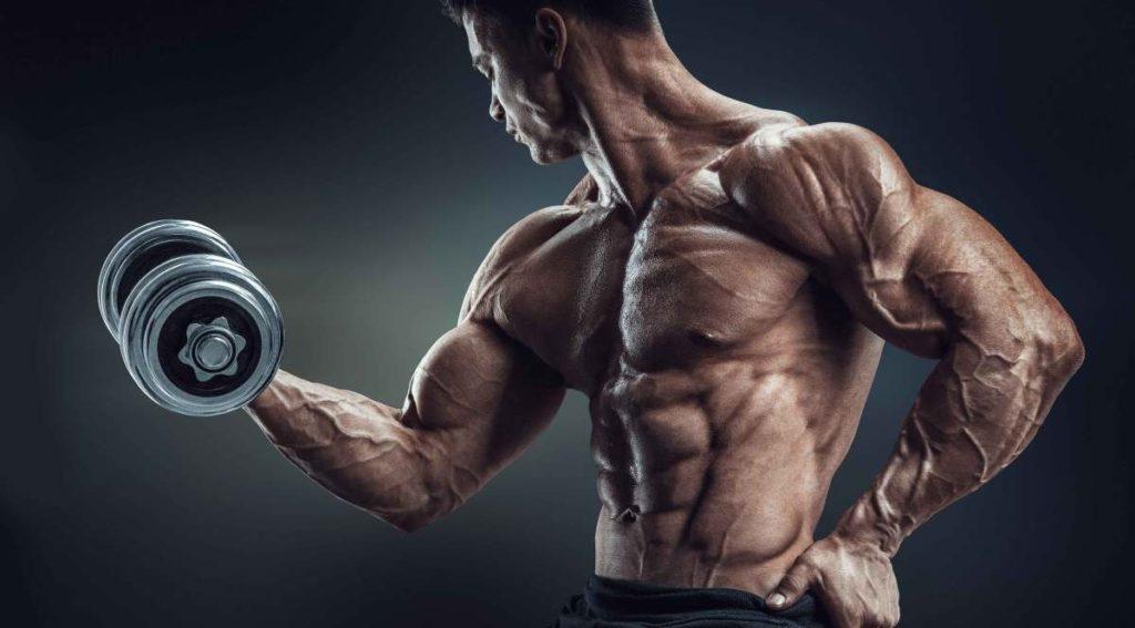 фитнес програма за начинаещи мъже