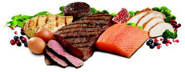 животински протеин