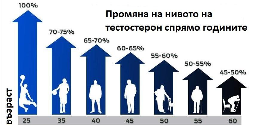 промяна на нивата на хрмони /тестострон/ с напредване на възрастта