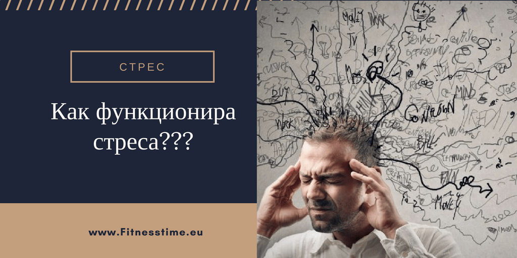 Стреса причните и как да го избегнем
