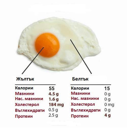 Съдържание на протеин имазнини в едно яйце