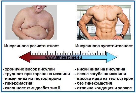 Bulking(Бълкинг) инсулинова чувствителност и хормони