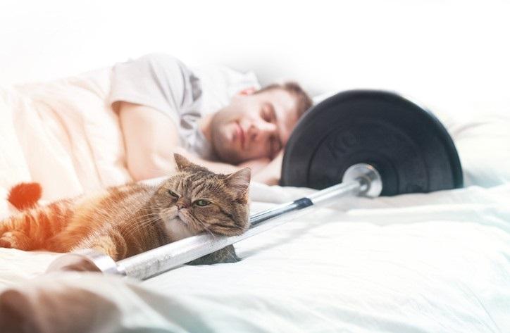 Хранителни добавки за сън